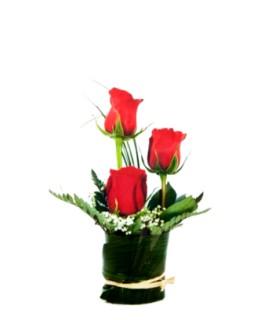 Floral 89