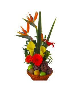 Floral 81