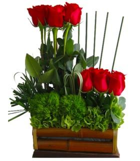 Floral 79