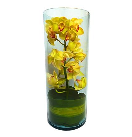 Floral 84
