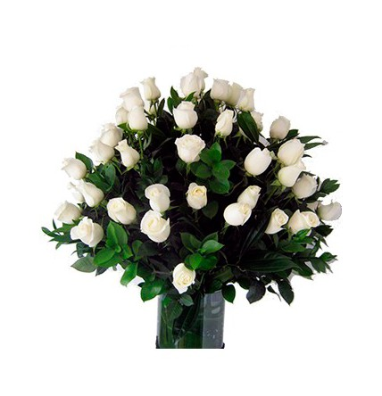 Floral 91